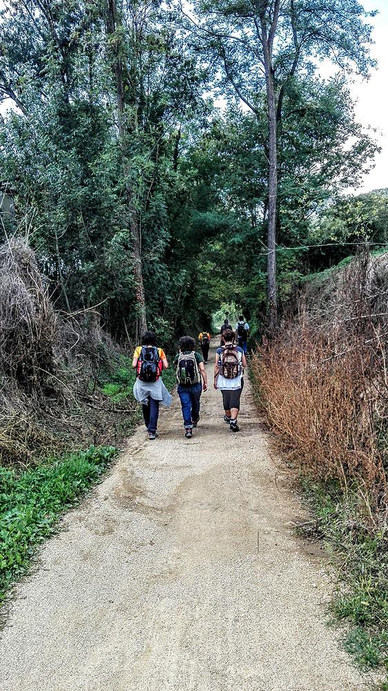 Tercera etapa del cami de Sant Jaume 4 - Diumenge, 9 d'octubre de 2016