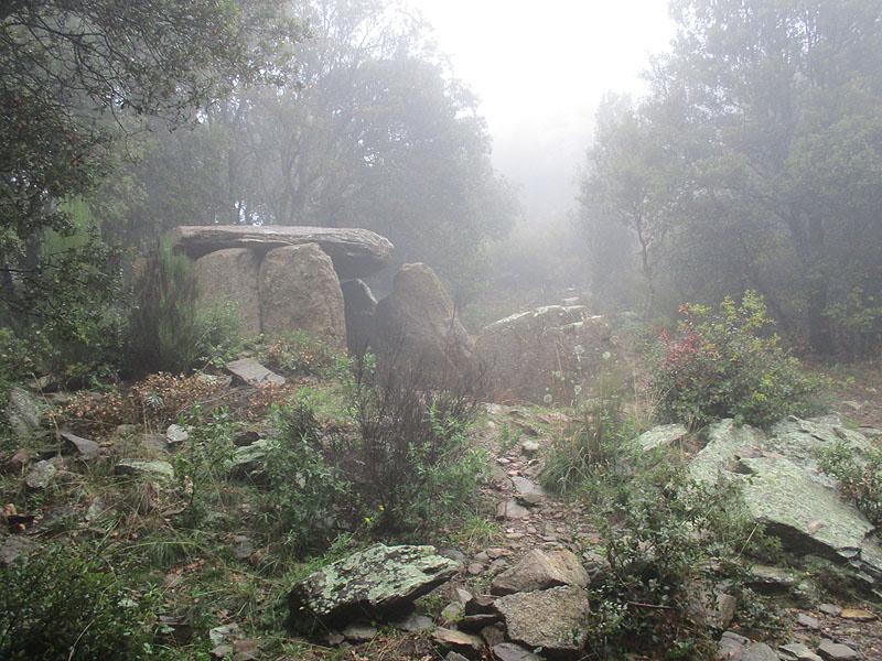 Puig de Sant Cristià 11 - Diumenge, 4 de desembre de 2016