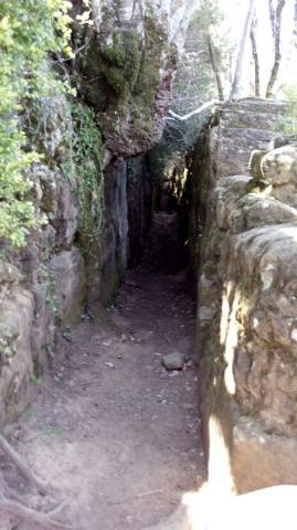 Camí de Sant Jaume: Vall d'en Bas - L'esquirol - Vic 15 - 18 i 19 de març de 2017